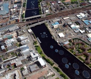 Solar lily pads on the Clyde